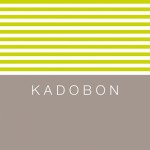 Kadobon stripes playing 10065