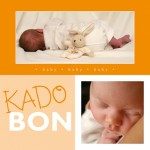 Kadobon Baby and Rabbit 10022