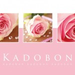 Kadobon Fortuna Pink Rose 10804