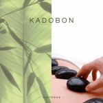 Kadobon Hot stone 10050
