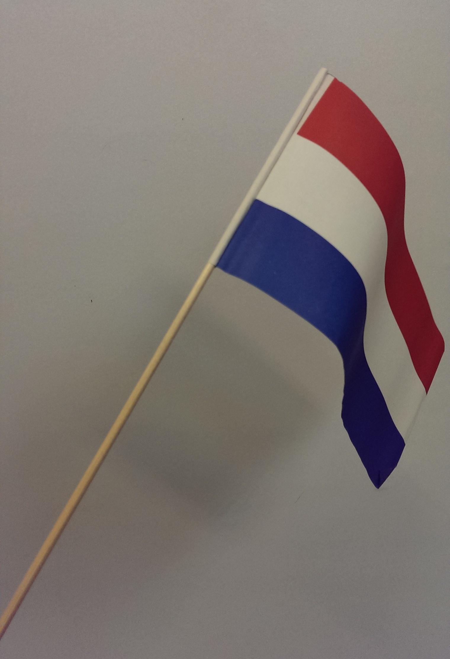 Vlaggetje Nederland